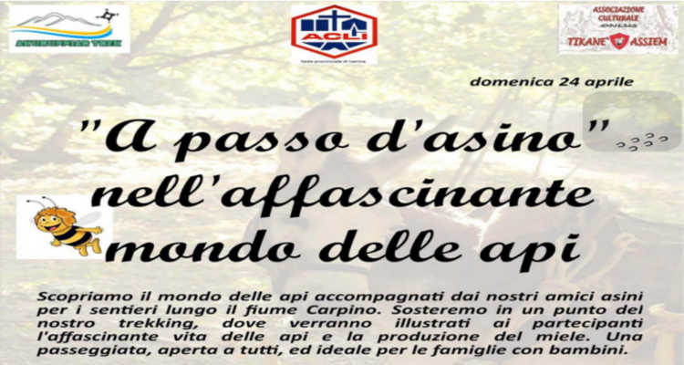 A PASSO D'ASINO, TREKKING DOLCE IN FAMIGLIA