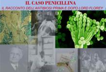 il-caso-penicillina-storia-di-una-scoperta-controversa-allunimol
