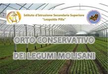 Orto conservativo dei legumi molisani, evento del Pilla a Campobasso