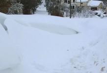 il gatto delle nevi