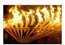 Pavone di fuoco - Ph. Giancarlo Bomba