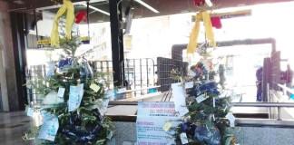 albero stazione Caritas 2