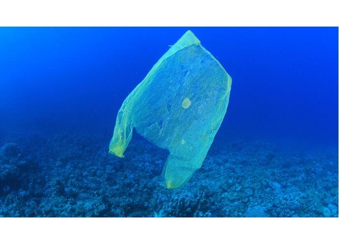 rifiuto plastica