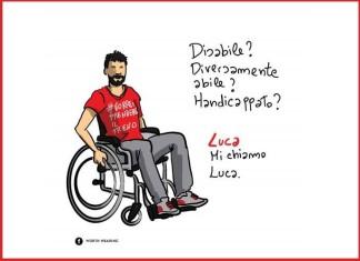 disabilità evid