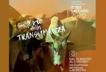 concorso tony vaccaro 2020 evid