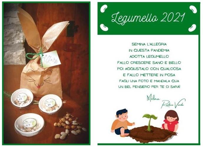 legumello evid